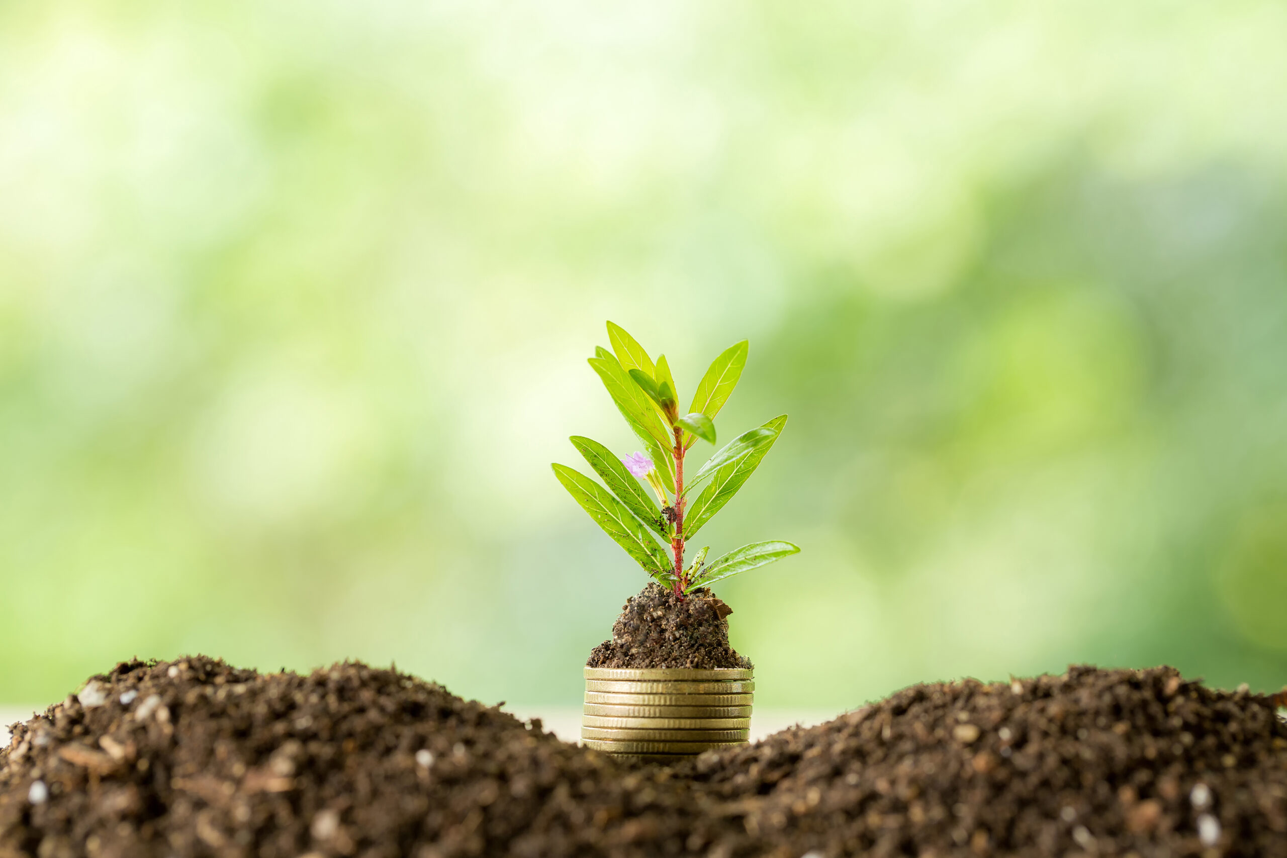 Additional green funding has been announced