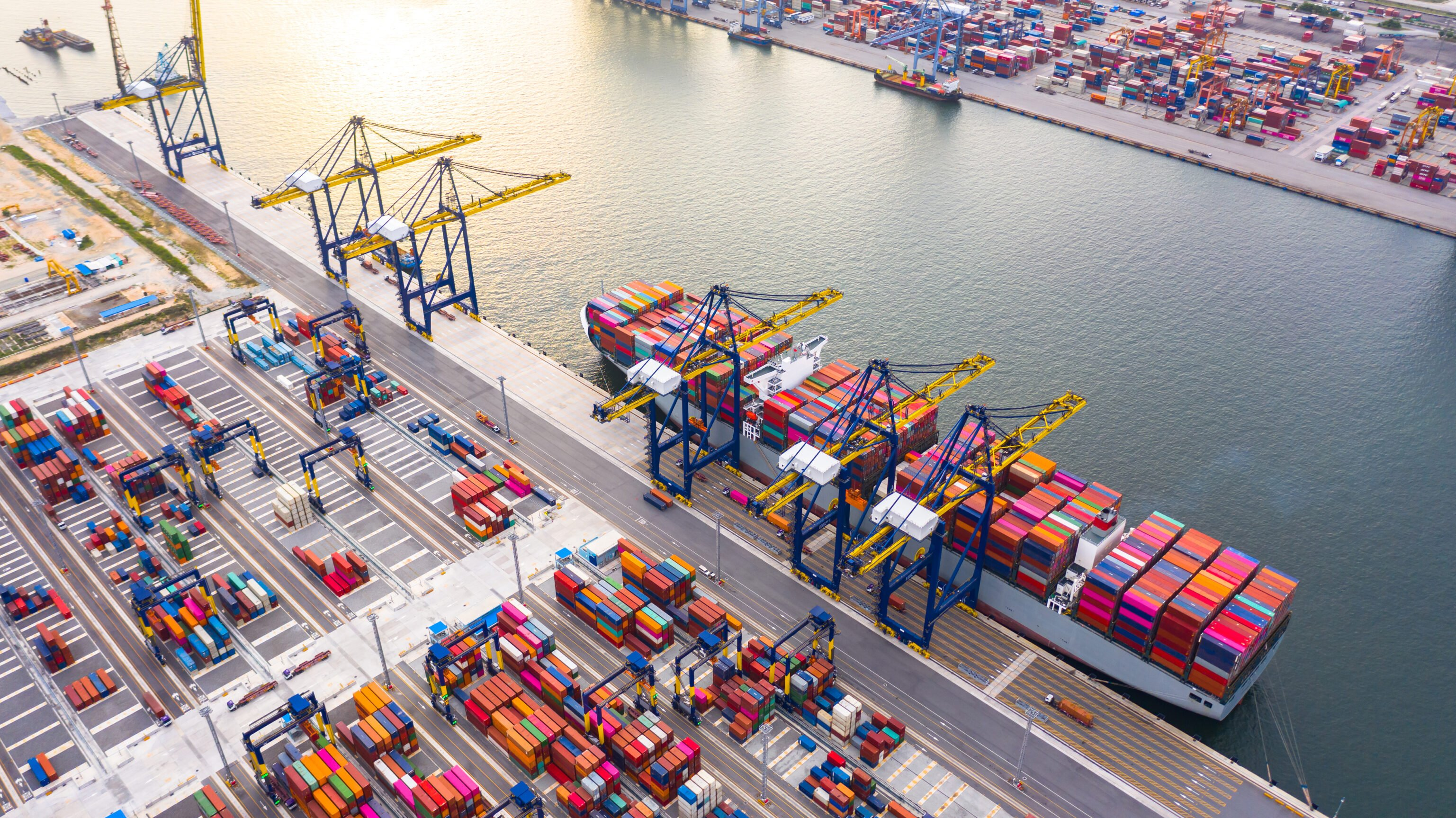port health and brexit